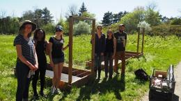 Student volunteers outside in the garden amongst raised beds
