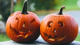 Des citrouilles sculptées sont déposées sur une table. | Carved pumpkins are set on a table.
